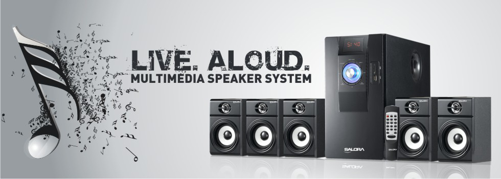 Salora Multimedia Speaker System